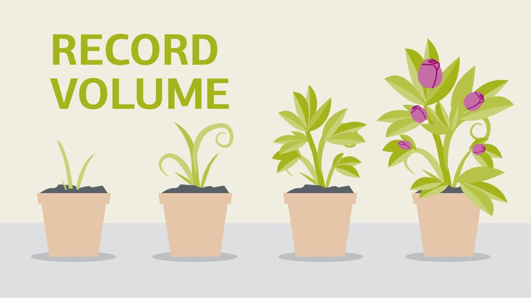 Illustration regarding the topic record volume of green bonds