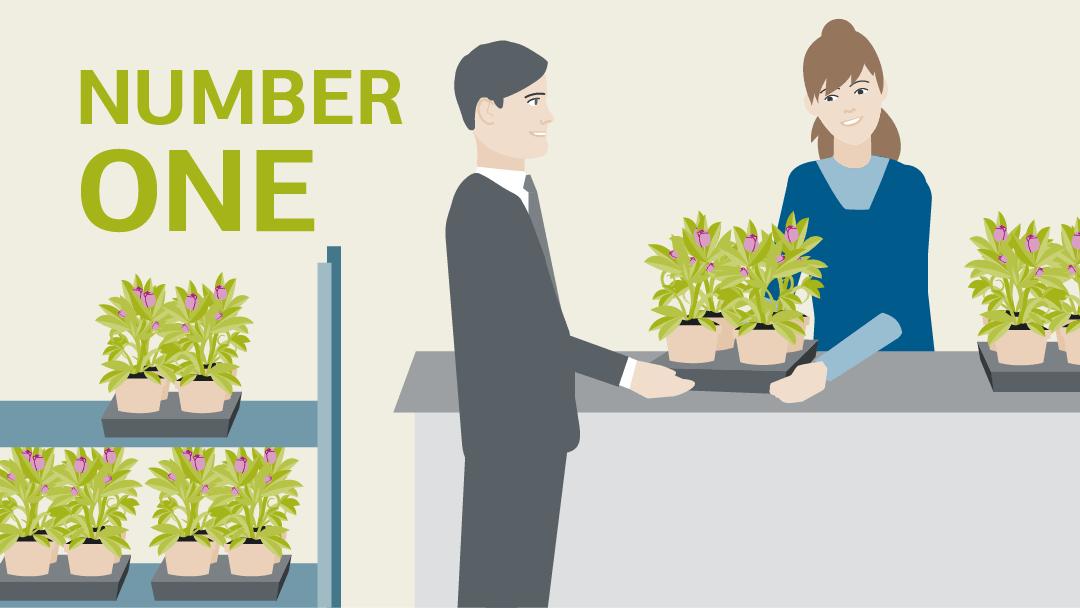 Illustration regarding the topic sustainably shaping markets