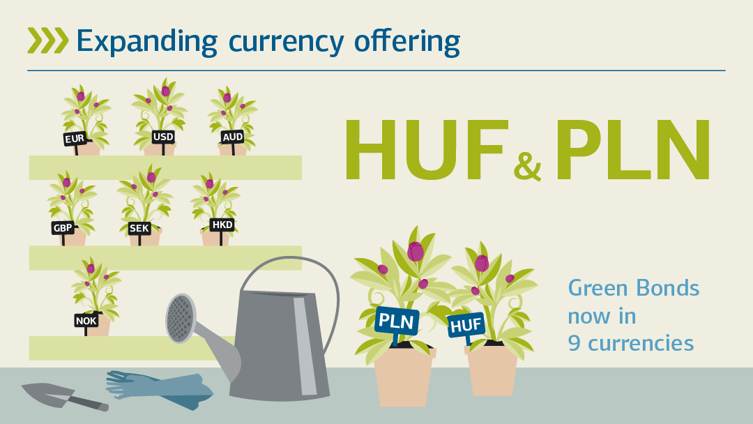 Illustration regarding the topic of expanding currency offering