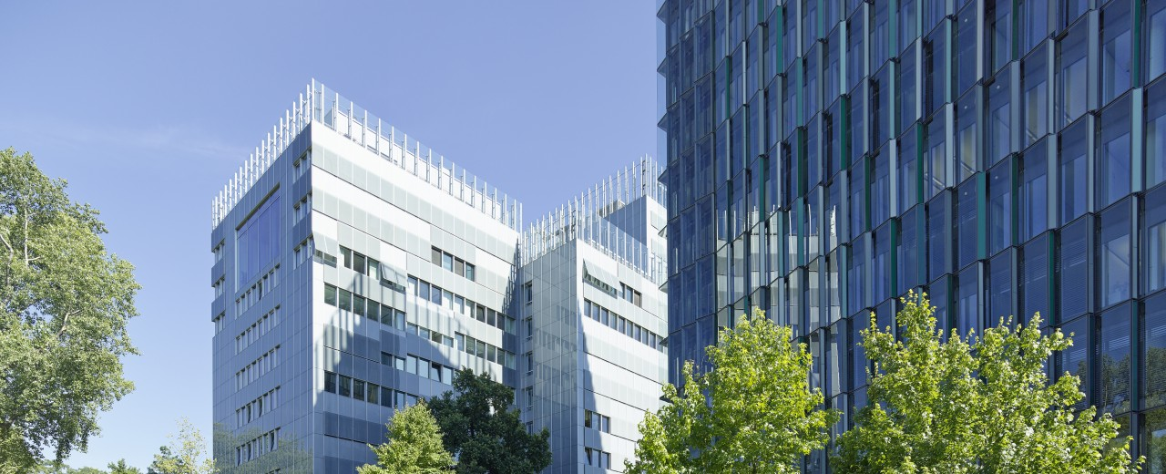 Blick auf die Grünanlagen hinter dem HAupthaus un dem IPEX Hochhaus der KfW Niederlassung Frankfurt im Juli 2014