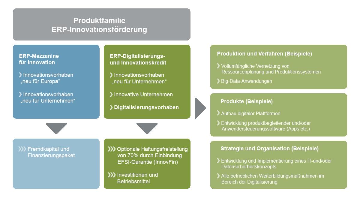 Grafische Darstellung Infografik ERP-Innovationsförderung