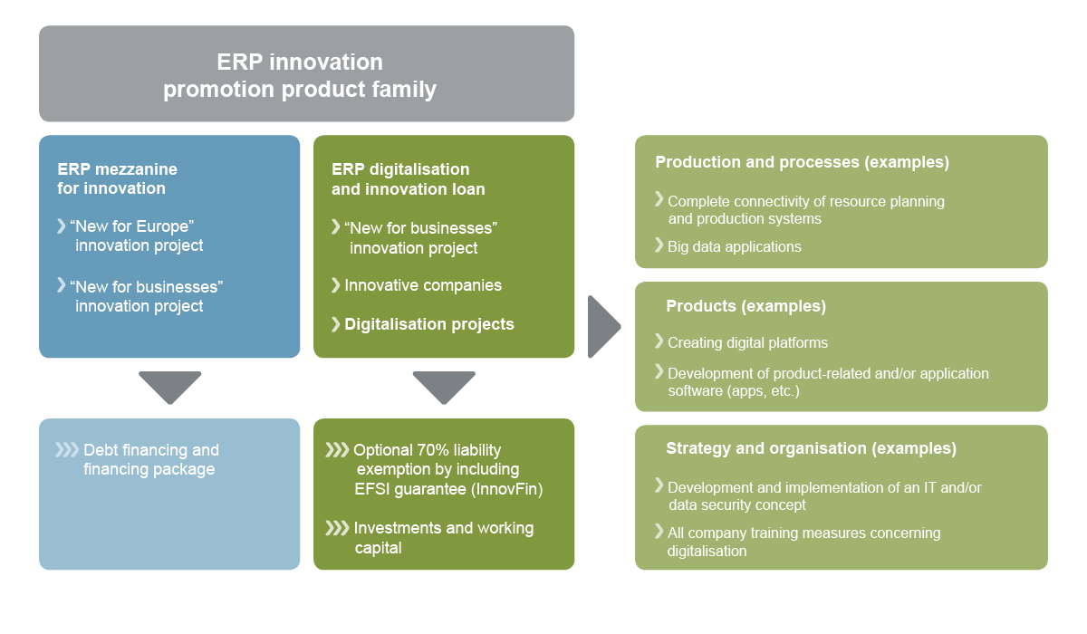 Graphic ERP innovation product family