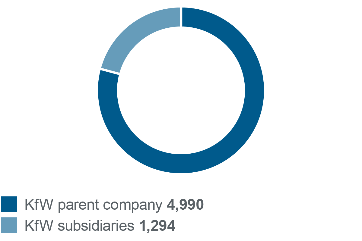 Graphic number of employees in 2017